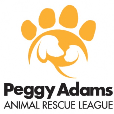 animal-rescue-league-peggy-adams