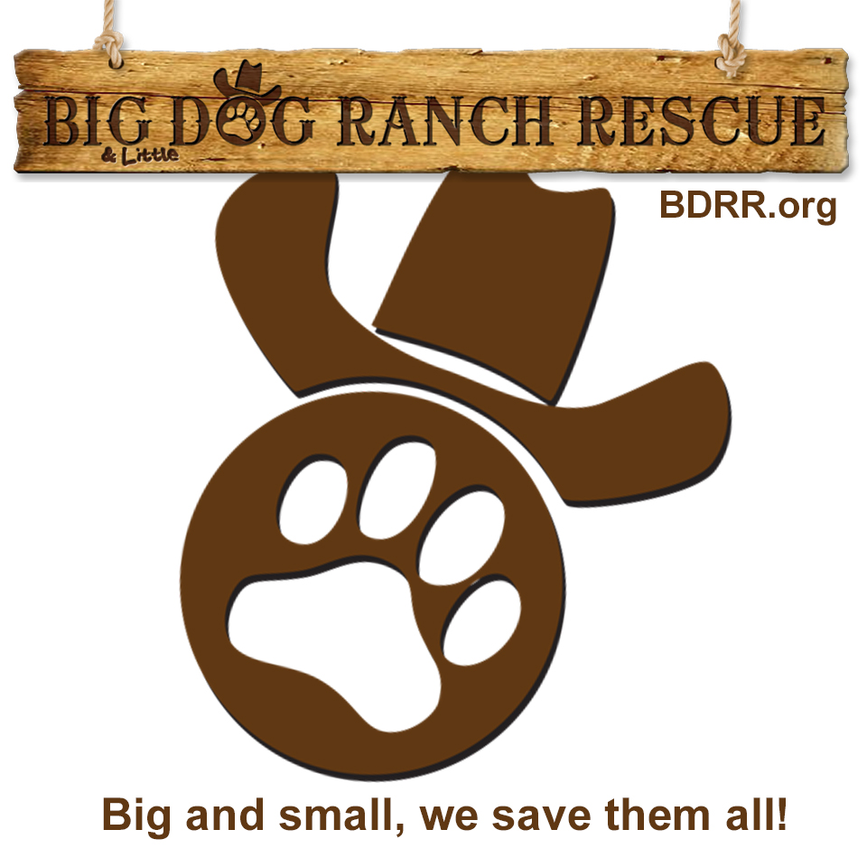 big-dog-ranch-rescue