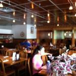 Sushi Masa & Thai Cuisine - Boca Raton coupons & discounts in Boca Raton, FL