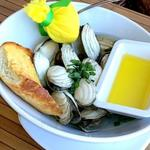 60% OFF Certificates to Boston's on the Beach, Delray Beach from Charitydine.com